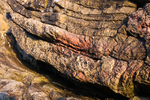 Caswell Bay Mudstones, Gower