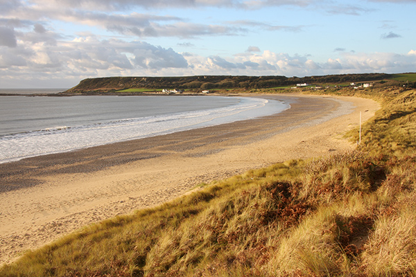 Port Eynon Bay, Gower